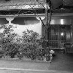 大蔵省のノーパンしゃぶしゃぶ事件(大蔵省接待汚職事件)、向島の料亭接待事件はCIAによる大蔵省解体の謀略だった。