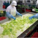 スーパーのカット野菜、コンビニの弁当に入っている野菜は次亜塩素酸ナトリウムというキッチンハイター漬けにされているので非常に危険!!