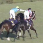 菊花賞は無敗の三冠馬を目指す福永騎手のコントレイルとルメールさんのアリストテレスとの壮絶な叩き合い。レース後にルメールさんが福永騎手の健闘を称える。